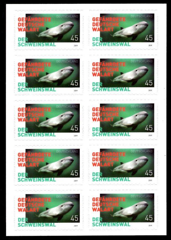 FBL 084 Schweinswal